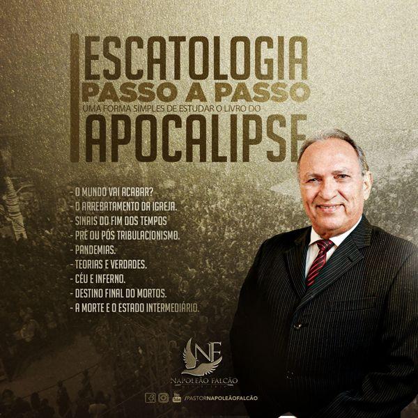 capa_curso-napoleão falcão